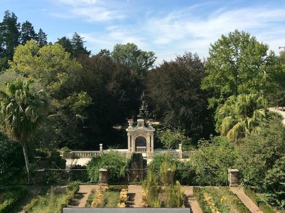 botanical-gardens-coimbra