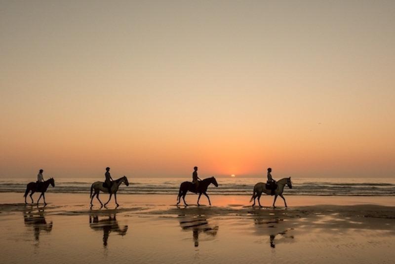 horse-riding-on-the-beach passeios-a-cavalo portugalholidays4u.com