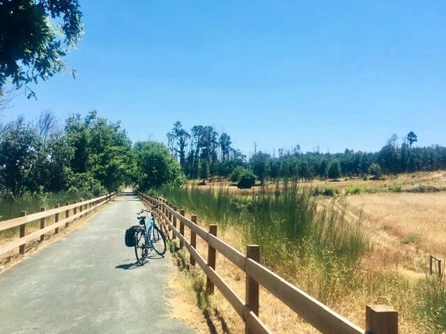 cycling-in-portugal-Ecopista-do-Dao