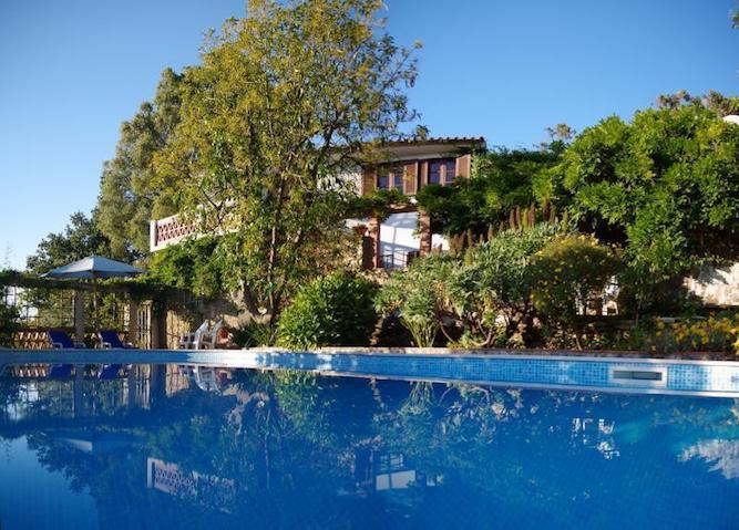 private-holiday-villas-on-vineyard-portugal
